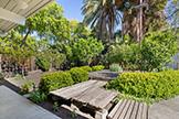 3582 Middlefield Rd, Palo Alto 94306 - Sideyard (A)