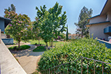 7150 Rainbow Dr 21, San Jose 95129 - Common Area (A)