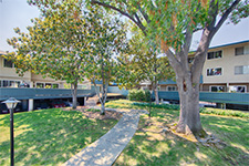 7150 Rainbow Dr 21, San Jose 95129