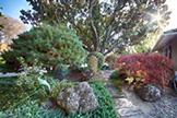 520 Rhodes Dr, Palo Alto 94303 - Front Yard (A)