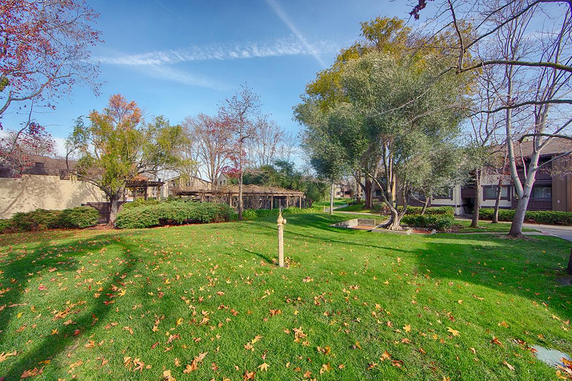 Front Yard (A) - 765 San Antonio Rd 56