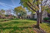 765 San Antonio Rd 56, Palo Alto 94303 - Front Yard (B)