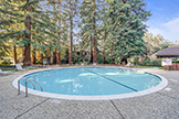 505 Cypress Point Dr 45, Mountain View 94043 - Pool (A)