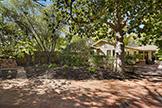 1160 Harker Ave, Palo Alto 94301 - Backyard (A)