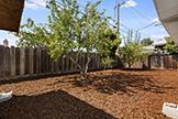 1187 Manzano Way, Sunnyvale 94089 - Backyard (A)