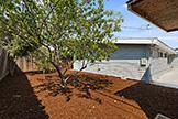 1187 Manzano Way, Sunnyvale 94089 - Backyard (B)