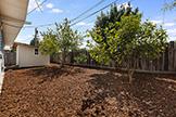 1187 Manzano Way, Sunnyvale 94089 - Backyard (D)